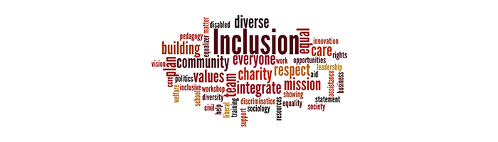 inclusion equality and diversity essay